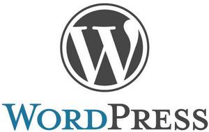 WordPress 空間(只限使用WordPress)